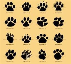 Kids And Everybody Paw Print Clip Art Can Be Used For Cat Prints