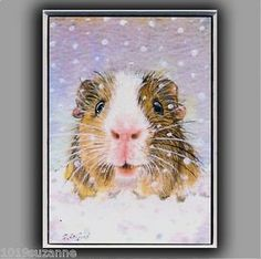 LIMITED-EDITION-ACEO-GUINEA-PIG-IN-SNOW-PAINTING-PRINT-BY-SUZANNE-LE-GOOD