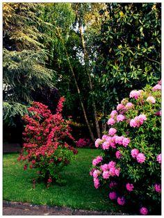 The garden of my grandfather. Designed by Au dehors Studio. Architettura del Paesaggio.