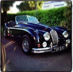 Read More About Jaguar XK 140...