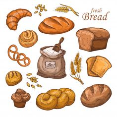 Buy Cartoon Bread and Fresh Bakery Product by MicrovOne on GraphicRiver. Cartoon bread, fresh bakery product, flour, ears of wheat. Hand drawn vector set isolated on white background. Art Du Pain, Asian Recipes, Mexican Food Recipes, Flour Bakery, Cute Food Art, Bread Art, Korean Fried Chicken, Cute Food Drawings, Recipe Scrapbook