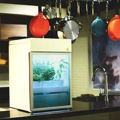 Trio gaúcho cria máquina para cultivo de horta orgânica em casa