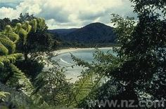 Stewart Island.  Want to go back NOW!