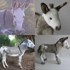 custom donkey stuffed animal plush