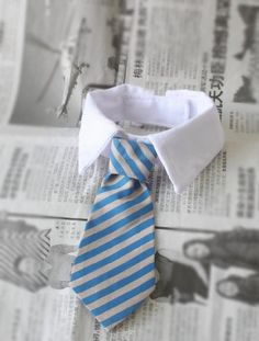 Namsan Twill Cotton Tie Small Dogs Cats Puppy Tie Neck Tie -Blue/Khaki *** Click image for more details.