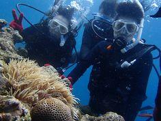 泳げなくても大丈夫^^! - http://www.natural-blue.net/blog/info_1431.html