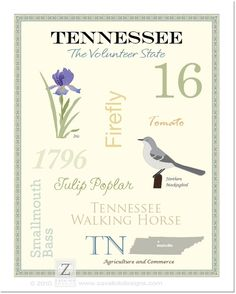 Shop for art on Etsy, the place to express your creativity through the buying and selling of handmade and vintage goods. Tennessee Girls, State Of Tennessee, Nashville Tennessee, University Of Tn, Visit Nashville, Go Vols, Smoky Mountain, Kitchen Signs, Good Ole