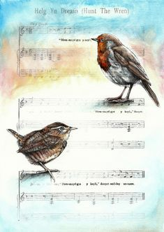 Tinted copy of pen and ink drawing of wren and robin on vintage music sheet. (c) Jesamine Kelly 2010