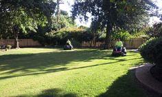 Lawn Mowing Duncan Oklahoma Duncan Oklahoma, Lawn Care, Lawn Mower, Dolores Park, Sidewalk, Travel, Lawn Edger, Viajes, Lawn Maintenance