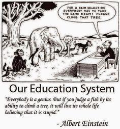 """""""Per una selezione equa tutti devono fare lo stesso esame: si prega di salire su quell'albero"""".     Ognuno è un genio. Ma se si giudica..."""
