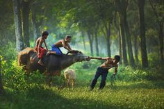 Photograph Our playground by Rarindra Prakarsa on 500px