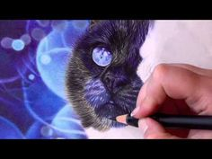 Welcome to my very first video demonstration! Today i will demonstrate how to achieve a realistic looking black fur with colored pencils. Also if my english ...