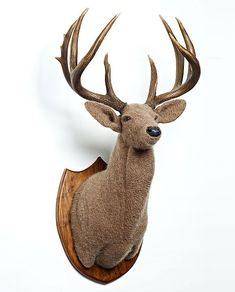 A crocheted deer mount??? Now I've seen it all.... And it's kinda cool.... Thx Robyn