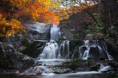 Photo One day late in autumn by Jeong injin on 500px