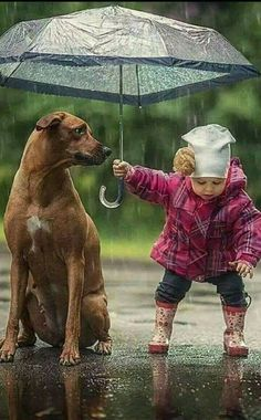 Top 11 Photos of Children with their Pets. #Amazing_Photos