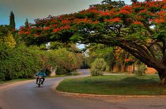 <3 *Saudades*  Kinkino Road  - Kaduna, Nigeria