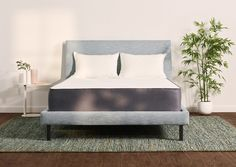 Sleep better in the award-winning Casper Original Mattress! Designed with layers of premium, breathable memory foam. Available in all-foam or hybrid in 6 sizes. Casper Mattress, Best Mattress, Foam Mattress, Casper Bed, King Size Pillows, Upholstered Bed Frame, Cool Beds, Bed Design, The Originals