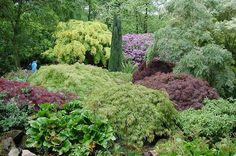 Goodnestone Park - Flip - Picasa Webalbums