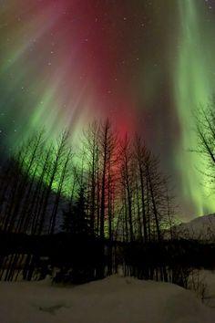 aurora borealis #photographytalk #landscape