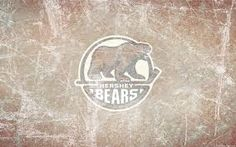 hershey bears logo - Google Search Hershey Bears, Bear Logo, Bear Wallpaper, Logo Google, Juventus Logo, Logos, Google Search, Logo