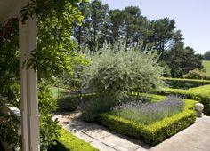 peter-fudge-lavender-garden-australia-gardenista-2
