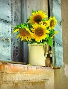 sunflower window