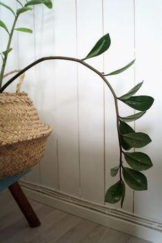 täällä! Wicker, Decor, Home, Decorative Wicker Basket, Home Decor