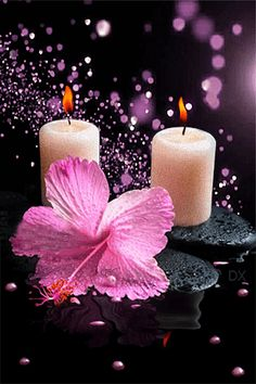 Гибискус и две свечи