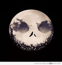 Moon: The Nightmare Before Christmas - Funny moon with clouds and birds making it look like the face of the Pumpkin King from The Nightmare ...