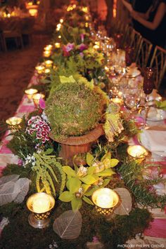 "Earthy centrepieces for a ""Midsummer Nights Dream"" theme inspired wedding, would have trees and bushes everywhere surrounding the perimeter of the reception space with faery lights intertwined to set the mood and atmosphere of an enchanted, magical evening."
