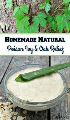 Natural Holistic Remedies While spending some time outdoors in the nice weather did you run into poison ivy or poison oak? If you did I am sure you are itching like crazy! I am going to show you how to make my Homemade Natural Poison Ivy Relief. Holistic Remedies, Natural Health Remedies, Herbal Remedies, Home Remedies For Colds For Babies, Cold Home Remedies, Poison Ivy Relief, Poison Ivy Remedies, Water Retention Remedies, Herbal Medicine