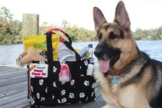 How to Create A Pet Sitting Kit- Very nice and detailed list for a pet kit!