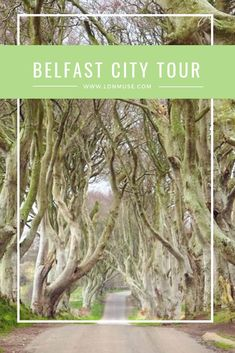Belfast City Guide European Travel, Travel Europe, Whiskey Distillery, Belfast City, Irish Traditions, The Beautiful Country, Worldwide Travel, Weekends Away