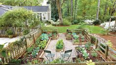 Taking Time to Grow   No longer an overgrown mess to avoid, Doug Scott's Atlanta yard now beckons his family to explore, play, and enjoy the outdoors