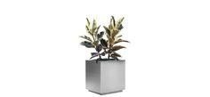 ekitta :: modoc-planter