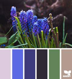 spring tones