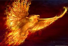 Artwork: phoenix rising by fantasy artist Tom Wood. See more artwork by this featured artist on the fantasy gallery website. Phoenix Rising, Phoenix Artwork, Phoenix Images, Immortelle, Rise From The Ashes, Phoenix Bird, Phoenix Animal, Phoenix Wings, Poster Prints