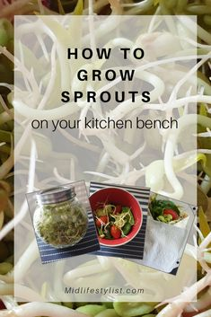 Growing your own sprouts is easy and can be done on your kitchen bench. Sprouts have many health benefits and are a great addition to a healthy diet. The process of sprouting releases important nutrients that can be utilised by your body easily. Healthy Habits, Healthy Recipes, Healthy Food, Lose Fat, Lose Weight, Easy Diets To Follow, Growing Sprouts, Kitchen Benches, Healthy Weight