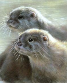 Vivien Walters. Otters