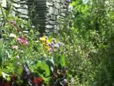 WARNING: This little video montage of the opening of the Peter Rabbit Garden in 2009 will make you yearn to start gardening! Such fresh and sweet images!!!