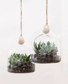 The sisters new glass ornaments make it possible to see all little details. Anna suggests that you decorate the glass with succulents which demand almost nothing but decorate beautifully. .  Glass ornament. Price per item DKK 3440 / EUR 484 / FO-DKK 4030 / ISK 874 / NOK 4990 / GBP 478 / CHF 622 / SEK 4880 .  Only in stores while stocks last. .  #plantdecor #interiors #homedecorating #homedecor #boligindretning #sostrenegrene #søstrenegrene #grenehome