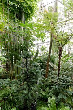 Cool Botanischer Garten des KIT in Karlsruhe