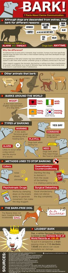Pretty comical view of why dogs bark.  Please do not use special collars or surgery to stop them from barking though.....