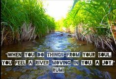 When you do things from your soul, you feel a river moving in you a joy. - Rumi