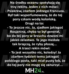 na-srodku-oceanu-spotykaja-sie-trzy-rekiny Funny Mems, Smile Everyday, Wtf Funny, Good Mood, Texts, Haha, Jokes, Sayings, Polish