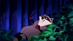 Meeko from Pocahontas | 28 Fantastically Adorable Disney Creatures That We Wish Were Real