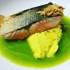 Salmón con sopa de espárragos y puré de coliflor y curry