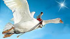 [Film Complet] Le Merveilleux Voyage de Nils au Pays des Oies Sauvages (...