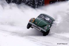Up Oh snow bug a roll'n in