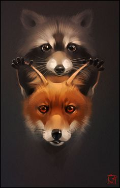 fox and raccoon by GaudiBuendia on @DeviantArt